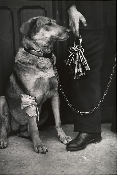 André Kertész | Mr. Caillot's Dog and the Keys of Notre Dame, Paris | The Met