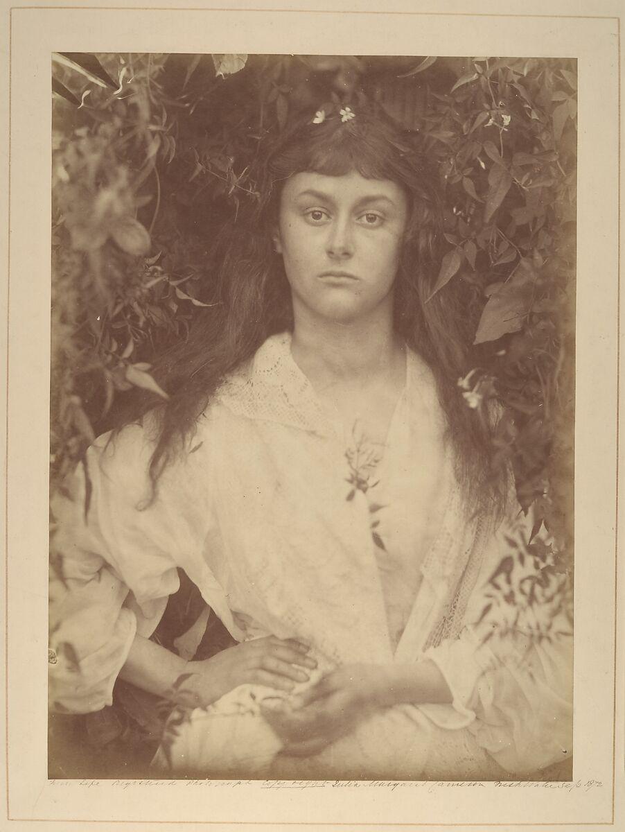 Julia Margaret Cameron | Pomona | The Met