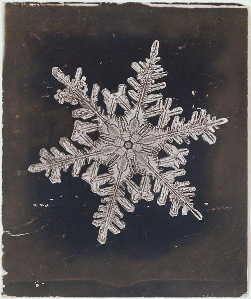 [Snow Crystal], Wilson Alwyn Bentley (American, 1865–1931), Gelatin silver print
