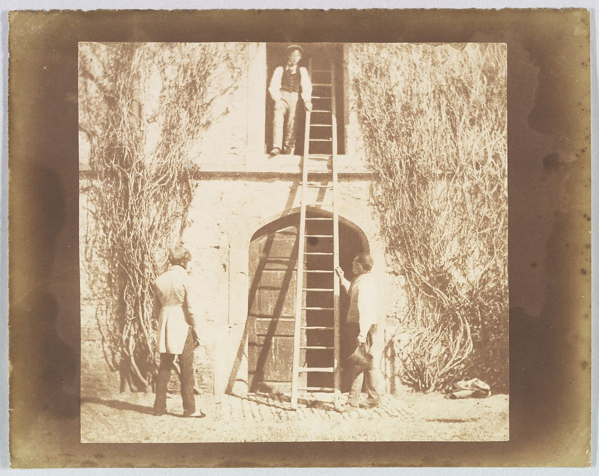 William Henry Fox Talbot | The Ladder | The Met