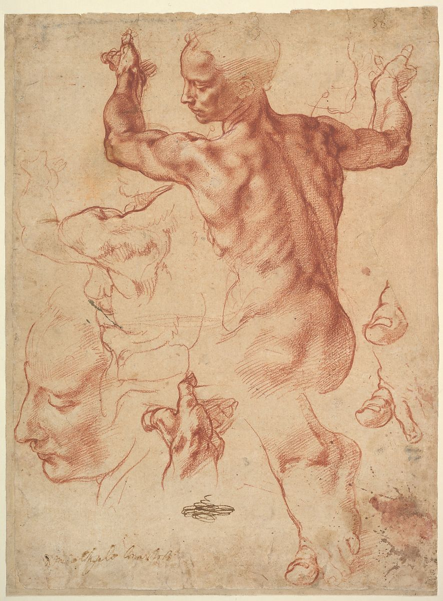 Michelangelo Buonarroti | Studies for the Libyan Sibyl (recto ...