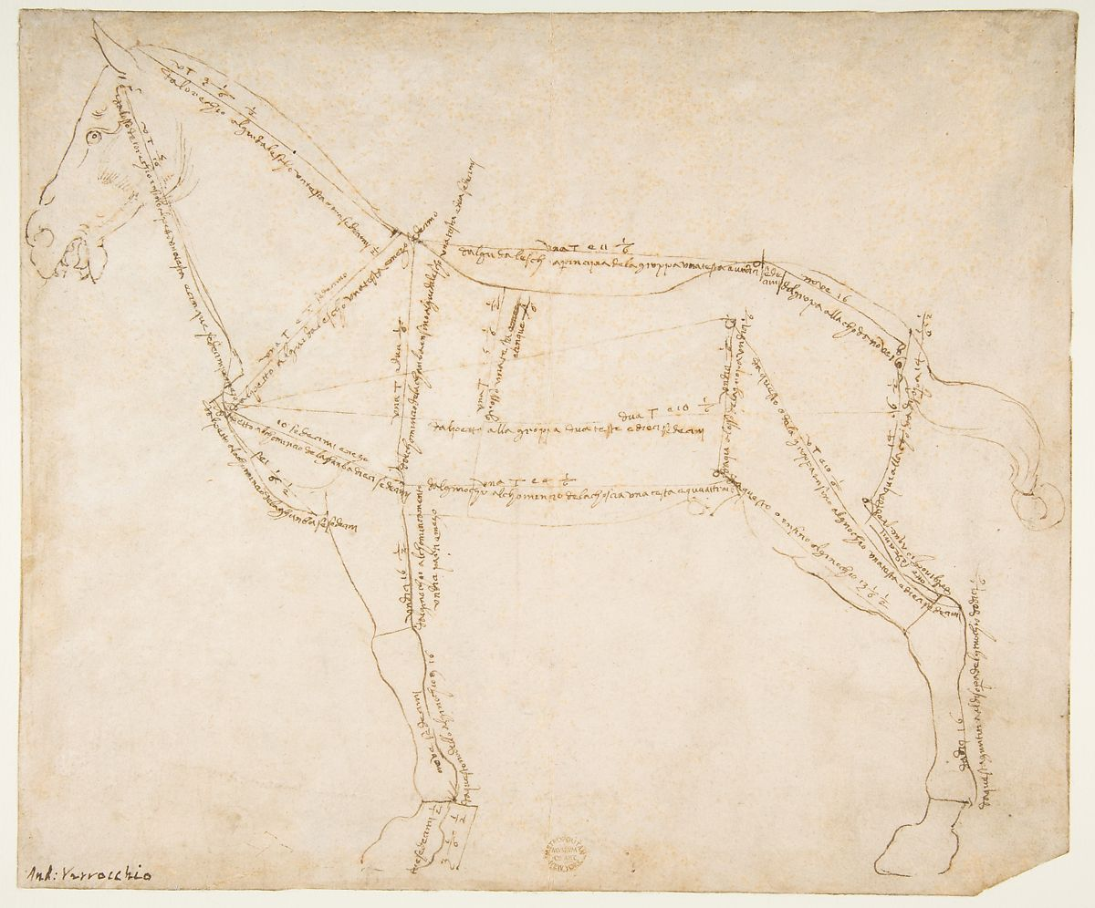 Measured drawing of a horse facing left recto ca 1480 88