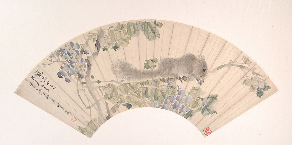 Sha Fu | Squirrel and Grapes | China | Qing dynasty (1644–1911) | The Met