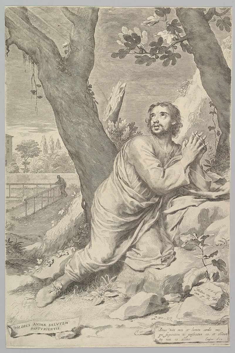 etching of Augustine by a tree from 1660