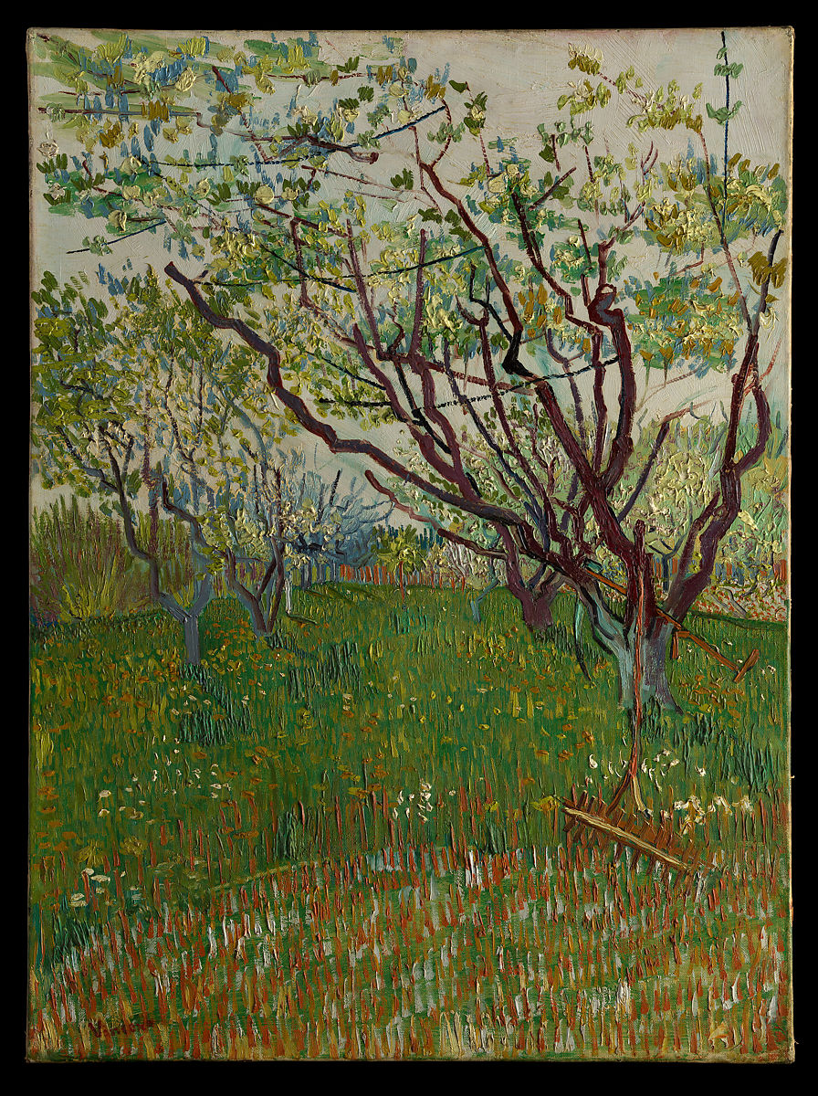Vincent Van Gogh The Flowering Orchard The Met