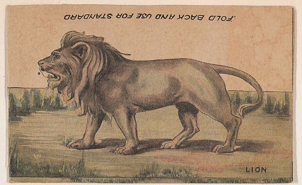 Issued by R. H. Wool Steam Bakery   Lion, collector card from the Animal  Cutouts series (D11), issued by the R. H. Wool Steam Bakery to promote  their product, Wool's Ithaca Crackers   The Met
