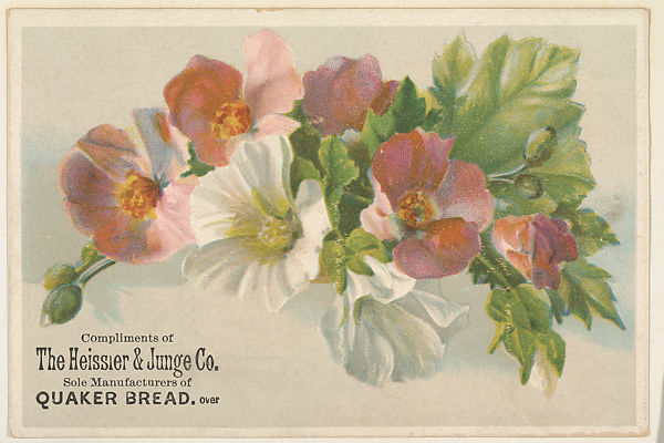 Issued By The Heissler Junge Company Pink And White Flowers